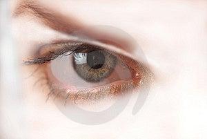 Oeil, Plan Rapproché Photographie stock libre de droits - Image: 2479537