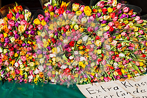 Isemarkt Royalty Free Stock Images - Image: 24700809