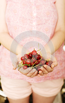 Cherries Stock Images - Image: 24793164