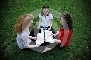 Learning On The Green Grass Royalty Free Stock Image - Image: 24804116