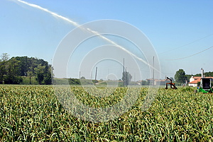 Pump Jet Watering A Cultivated Field Stock Images - Image: 24843184