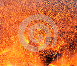 Fire Royalty Free Stock Photography - Image: 24880387