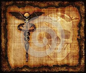Skulls, Sankes And Bat Parchment Royalty Free Stock Photo - Image: 24881415