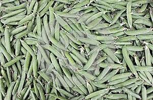 Pea Pods Stock Photo - Image: 24924620