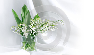 Lily Of The Valley Royalty Free Stock Photography - Image: 24930117