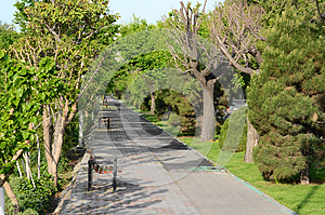 Walkway Royalty Free Stock Image - Image: 24931106