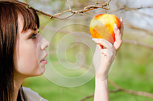 Portrait Of Beautiful Young Girl Picking The Apple Royalty Free Stock Photos - Image: 24936018