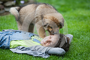 Cute Puppy Licks A Girl Lying In The Grass Royalty Free Stock Photos - Image: 24941518