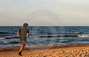 Shaggy Beach Runner Free Stock Photography