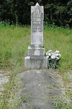 Confederate Wife Grave Free Stock Photo