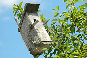 Bird House Free Stock Photo