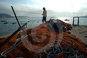 Fisherboy Free Stock Photos