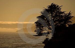 Shell Beach Free Stock Photo