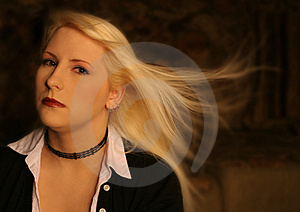 Business Blonde 6 Free Stock Photography