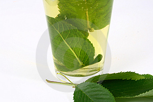 Ice Green Tea Royalty Free Stock Photo - Image: 2507245