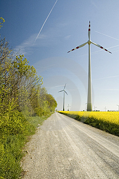 Wind turbines and rapeseed fie