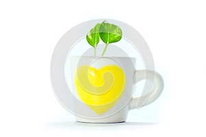 Plants In Cup Of Heart With White Background. Stock Images - Image: 25005744