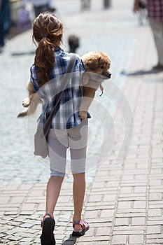 Girl Carries Her Puppy Royalty Free Stock Photo - Image: 25044415