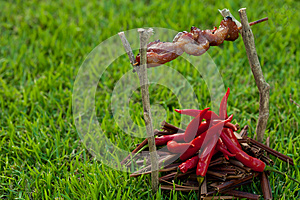 Barbecue On A Stick With Red Pepper, Depicting The Stock Photos - Image: 25052393