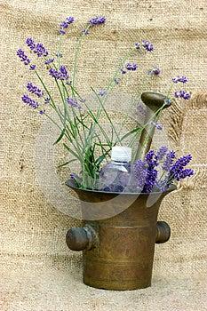 Lavender - Spa Treatment Royalty Free Stock Photos - Image: 25116188