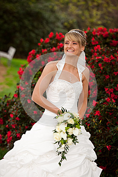 Laughing Bride Funny Red Roses Royalty Free Stock Image - Image: 25129896