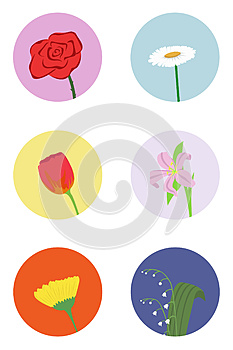 Set Of Flowers Royalty Free Stock Photography - Image: 25131937