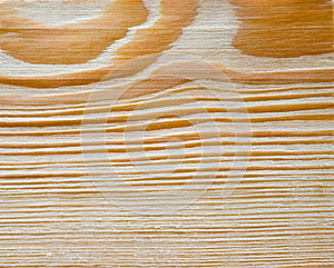 Cut Of A Tree Royalty Free Stock Images - Image: 25143219