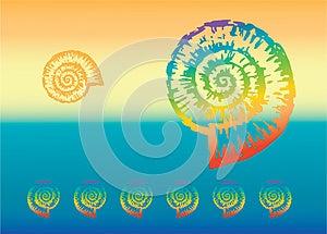 Multicolored Nautilus Stock Photos - Image: 25165743