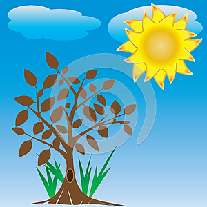 Tree And Sun Royalty Free Stock Image - Image: 25226296