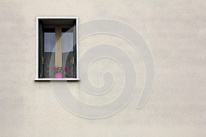 Flowers On The Window Stock Photos - Image: 25233303