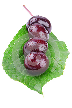 Wet Cherry On A Green Leaf Stock Photos - Image: 25312193