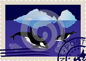 Postage Stamp With Killer Whales Royalty Free Stock Photography - Image: 25321787