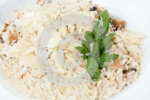 Risotto With Sauce And Fried Mushrooms Stock Photos - Image: 25323513