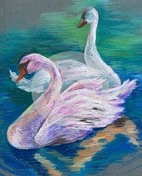 Swans Stock Image - Image: 25331121