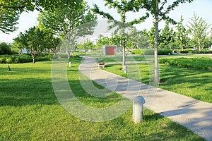 Парк лета Стоковое фото RF - изображение: 25354545