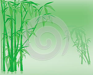 Bamboo Royalty Free Stock Photos - Image: 25359048