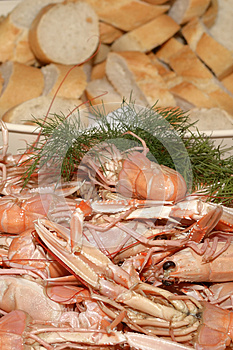 Crayfish And Bread Stock Image - Image: 25361241