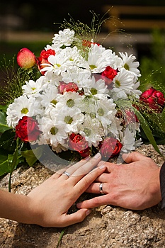 Wedding Rings Stock Images - Image: 25361684