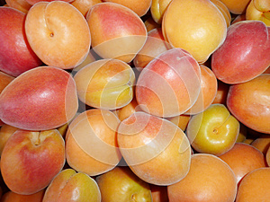 Ripe Apricots Stock Photography - Image: 25389592