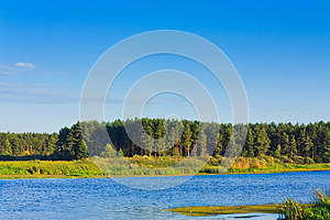 Forest Lake Under Blue Cloudy Sky Stock Photos - Image: 25393743