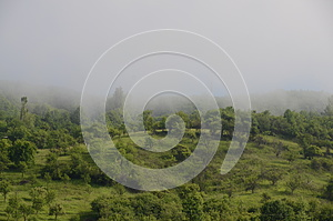 Rural Fog Hill Royalty Free Stock Image - Image: 25394706