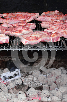 Meat On The BBQ Stock Photography - Image: 25397172