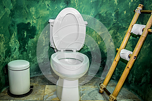 Flush Toilet Stock Photo - Image: 25404950
