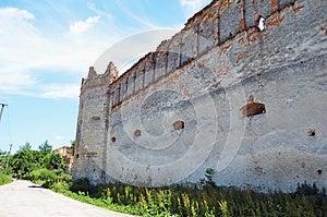 城堡selo凝视 免版税库存照片 - 图片: 25432828
