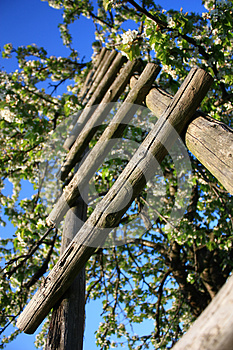 Wooden Ladder Stock Images - Image: 25436624
