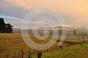 Misty Morning Stock Photos - Image: 25443453