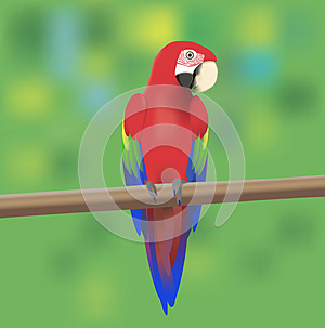 Red Macaw Parrot Stock Photo - Image: 25452440