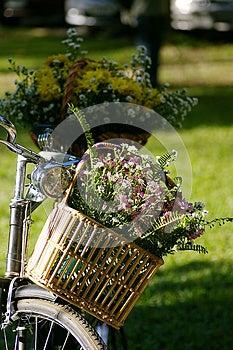 Flower Basket Royalty Free Stock Image - Image: 25470196