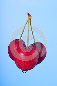 Three Cherries Stock Photos - Image: 25501703