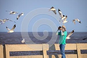 Photographer Taking Seagulls Photo Stock Photo - Image: 25503770